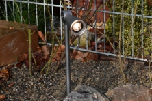 Zapichovací LED reflektor do záhonu, 12V Garden Lights